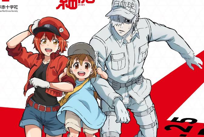 Cells At Work Season 2 : Expected Release Date , Plot , Show Cast and More  Details - Finance Rewind
